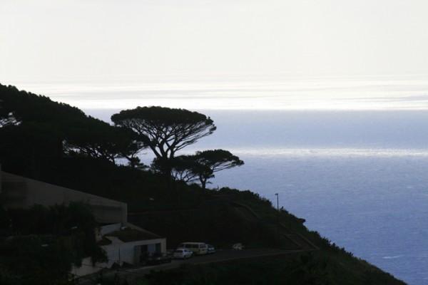 Die steilen Hänge der Blumeninsel Madeira