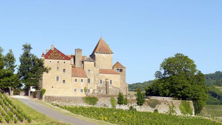 Chateau_de_Pierreclos_03