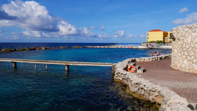 Dolphin-Academy-Curacao-1