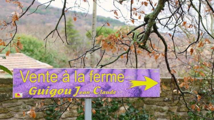 Lavendel-Provence10