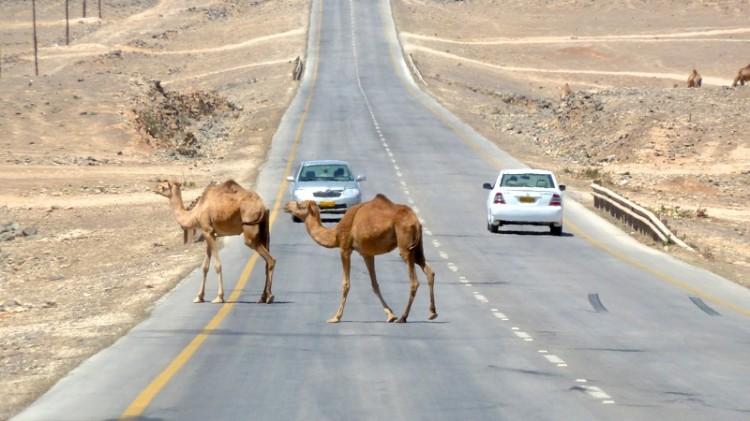 Salalah im Oman