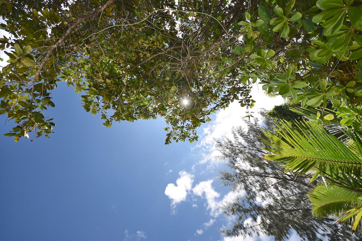 Schoensten-Straende-Seychellen-2