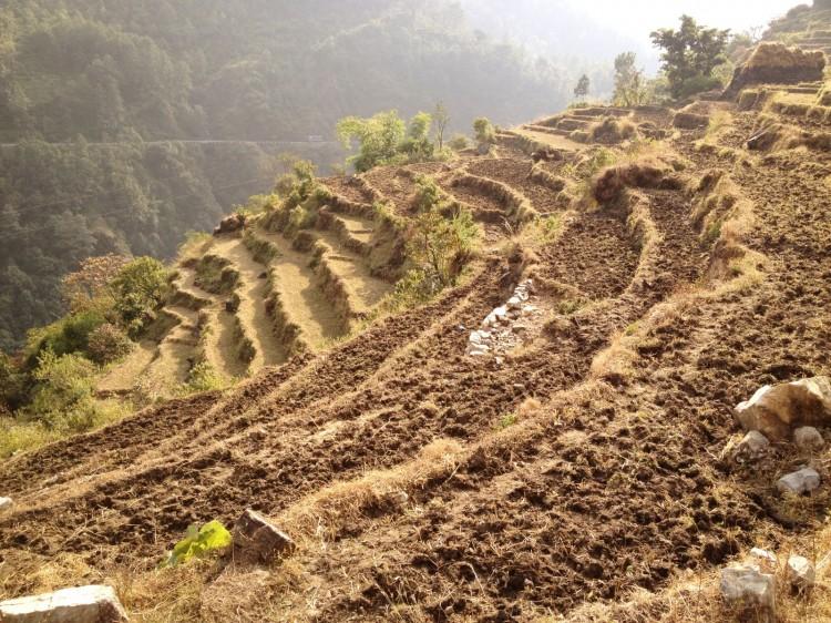 Abenteuerurlaub-Nepal8