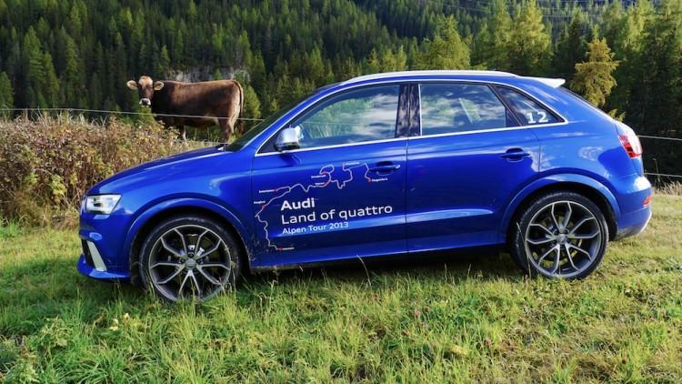 Audi Q3 mit Kuh Rosi