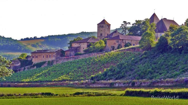 Chateau_de_Pierreclos_02