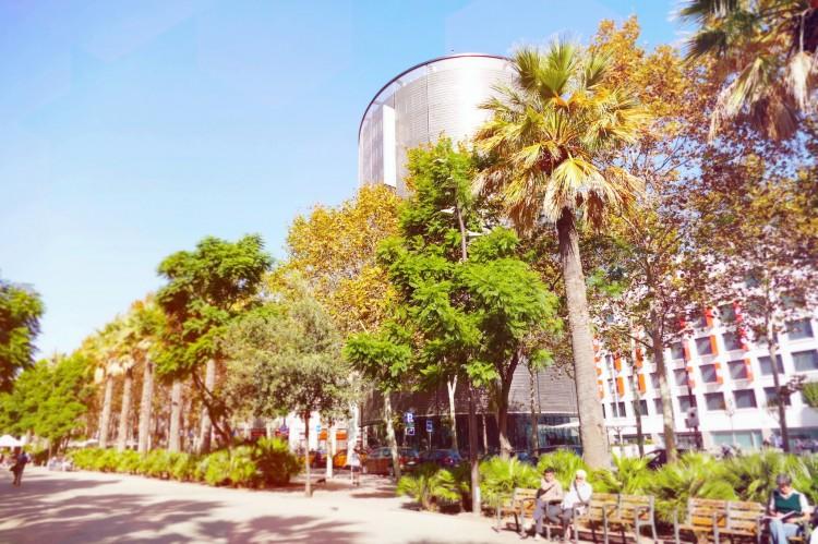 Hotel-Barcelo-Raval-10