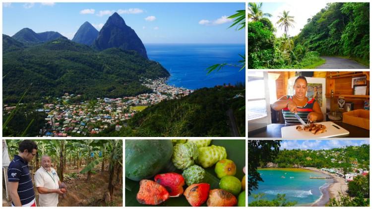Ausflug auf St. Lucia